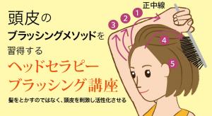 頭皮のブラッシングメソッドを習得するヘッドセラピーブラッシング講座